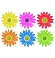 Colourful flowers vector image vector image