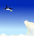 Diving penguin vector | Price: 1 Credit (USD $1)
