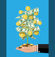 money tree in hand vector image vector image