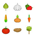 phytology icons set cartoon style vector image vector image