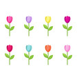 tulip collection vector image vector image