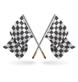 Racing formula flags isolated on light background vector image