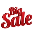 Big sale sign isolated icon vector image