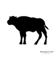 black silhouette bison calf on white background vector image vector image