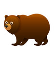 brown bear cute cartoon character vector image vector image