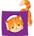cat with a card of geometric shape circle vector image vector image