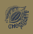 cocoa fruit beans or grains vintage badge or vector image vector image