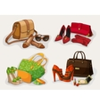 collection women bags shoes and accessories vector image vector image