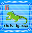 flashcard letter i is for iguana vector image vector image
