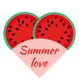 flat flat watermelon sliced juicy vector image
