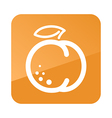 Peach outline icon Fruit vector image vector image