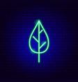 plant leaf neon sign vector image vector image