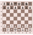 Chess pieces on a chess board vector image