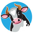 cartoon cow in circle shape vector image vector image