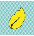 leaf icon design vector image vector image