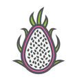 pitaya line icon dragon fruit and tropical vector image