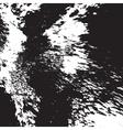 Texture Original vector image vector image