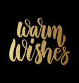 warm wishes lettering phrase on dark background vector image