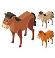 3d design for horses in three colors vector image vector image