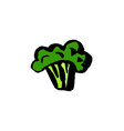 broccoli icon grunge ink hand drawn vector image