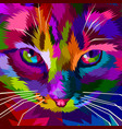 colorful cool cat eyes vector image vector image
