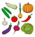 Healthy farm vegetables color sketches vector image vector image