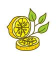 lemon fruit design template flat vector image vector image
