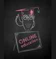 owl in mortarboard sitting on tablet vector image