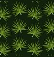 pattern color set decorative of palm irregular vector image vector image