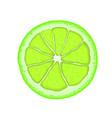 realistic lime citrus slice vector image