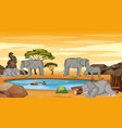 scene with many elephants in dry land vector image