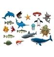 Sea fish and ocean animals cartoon icons