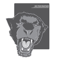 angry panther vector image vector image