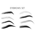 eyebrows black and white set vector image vector image