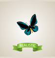 realistic lexias element of vector image