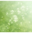 Soap bubbles on a nature background vector image vector image