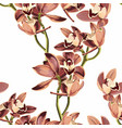 tropical vintage beige orchid flower pattrn vector image vector image