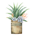 watercolor composition cacti and vector image vector image