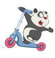cute brown bear cartoon character vector image vector image
