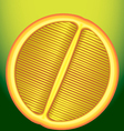 fresh orange in a longitudinal section on a green vector image vector image