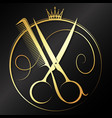 golden scissors and comb graceful symbol vector image vector image