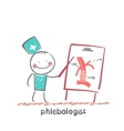 phlebologist vector image