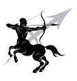 sagittarius zodiac horoscope astrology sign vector image