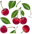 seamless pattern red ripe cherries with leaves vector image vector image