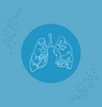 white human lungs and bronchi on substrate vector image vector image