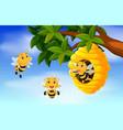 a honey bee under a tree vector image
