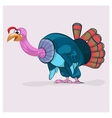 Fat turkey-cock who will be prepared for vector image
