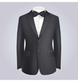 Male Clothing Stiped Dark Suit with Bow Tie vector image