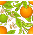 orange branch pattern vector image