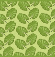 pattern color set decorative of tropical vector image vector image